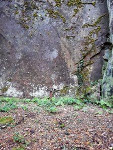 象の墓場へ寄り道